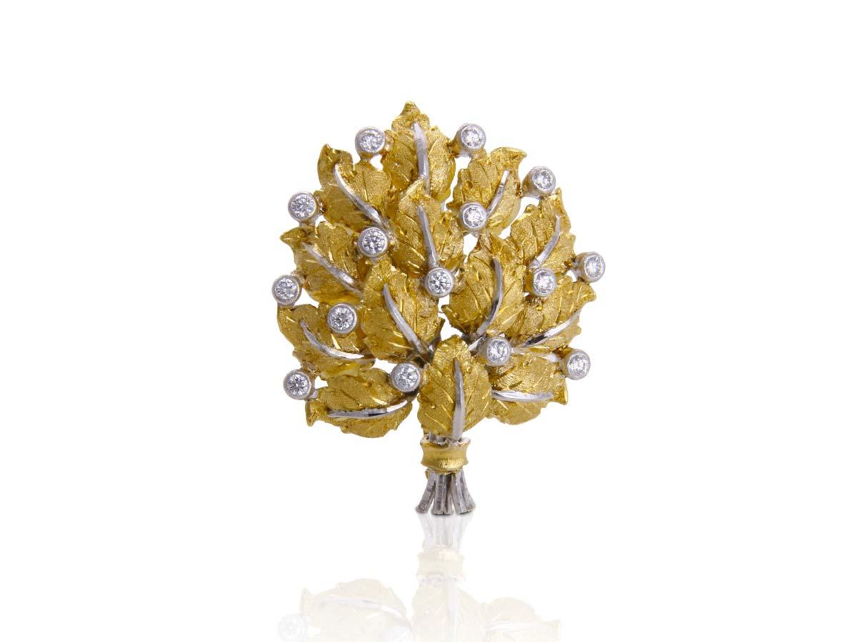 foglie-spilla-5-1200x900
