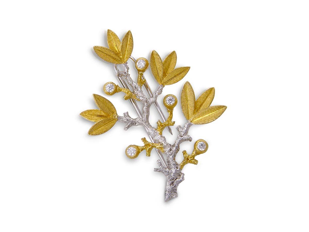 foglie-spilla-6-1200x900